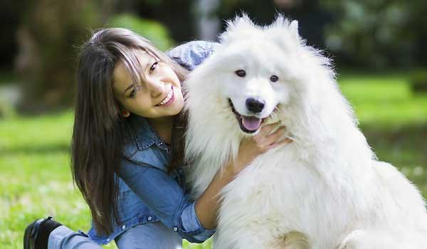 Preparing For Pet Adoption