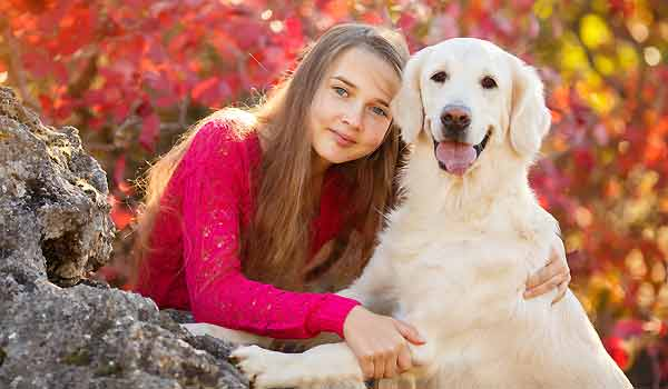 Adopting A Dog - What You Need To Know For A Successful Dog Adoption